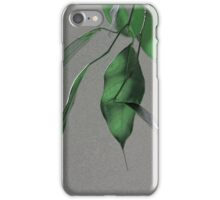 Ficus Sumi-e iPhone Case/Skin