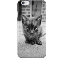 Stray Cat #1 iPhone Case/Skin