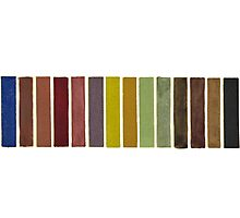 Color Swatches Photographic Print