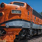 Royal Gorge Railroad Diesel # 402  by John  Kapusta