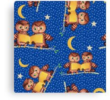 Cute Baby owls starry night pattern, moon Canvas Print