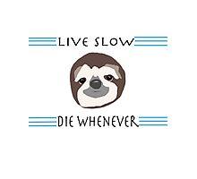 Sloth Life Photographic Print