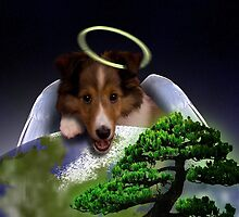 Happy Arbor Day Angel Sheltie by jkartlife