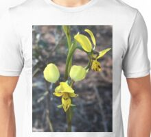 Lemon Double tail Ground Orchid of the Warrumbungles Unisex T-Shirt