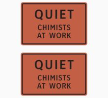 Quiet - Chemists At Work by jestic