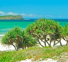 Cook Island View by Penny Smith