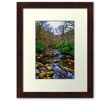 Down In the River Framed Print