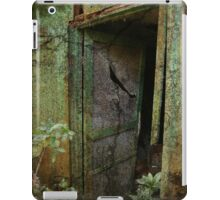Screen Door iPad Case/Skin