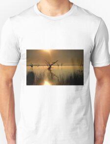 Worshipping Nature Unisex T-Shirt