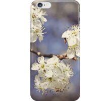 Blossom Blue iPhone Case/Skin