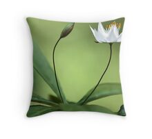 Starflower With New Bud Throw Pillow