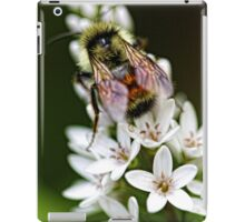 Bumble Bee - Late Afternoon iPad Case/Skin