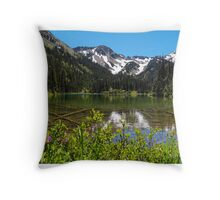 Royal Basin Throw Pillow