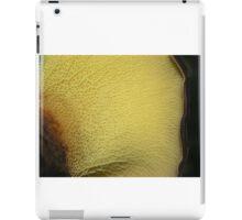 Ash Beauty iPad Case/Skin