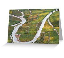 Vineyards in the Rhone-valley - Switzerland Greeting Card