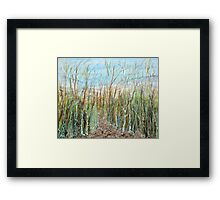 A walk to the dunes Framed Print
