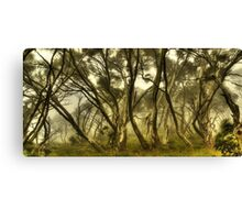 Wind in the snowgums Canvas Print