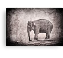 Oh My Oh My! Canvas Print