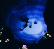 Little mermaid  by Disneyland1901
