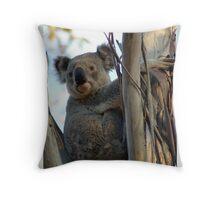Majestic Koala Throw Pillow