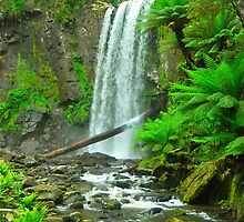 Hopetoun Falls by Penny Smith