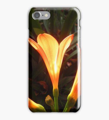 Hidden Sun iPhone Case/Skin