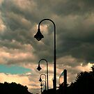 Parking Lot Lamps in Silhouette by Jane Neill-Hancock