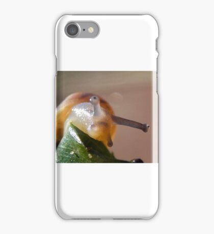 i can see your EYE iPhone Case/Skin
