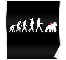 Evolution Harambe Poster