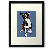 Freddie English Bull Terrier Framed Print