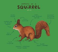 Anatomy of a Squirrel One Piece - Short Sleeve