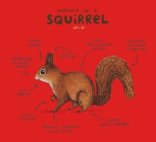 Anatomy of a Squirrel One Piece - Long Sleeve