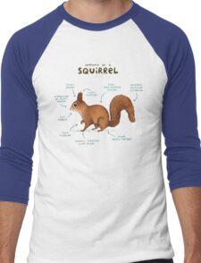Anatomy of a Squirrel Men's Baseball ¾ T-Shirt