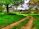 Balcombe Viaduct - The Cottages - HDR by Colin  Williams Photography