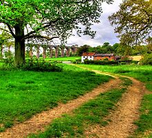 Balcombe Viaduct - The Cottages - HDR by Colin J Williams Photography