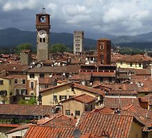 Towers and Roof Tops, Lucca by wiggyofipswich