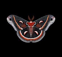 Cecropia Moth Painting by Mary Capaldi