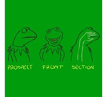 KERMIT: PROSPECT - FRONT- SECTION Photographic Print