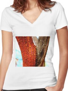Stripped  Women's Fitted V-Neck T-Shirt
