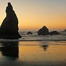 Sunset On The Oregon Coast by Lanis Rossi