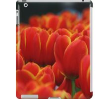 Red tulips with yellow edges iPad Case/Skin