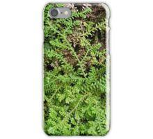 Lichens iPhone Case/Skin