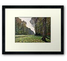 Claude Monet - The Road To Bas-Breau, Fontainebleau (Le Pave De Chailly) 1865  Framed Print