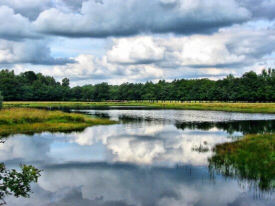Clouds Reflection by ienemien