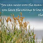 You can never cross the ocean...... by LifeisDelicious