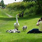 Michaela(my Granddaughter) with Mum and Babies, by AnnDixon