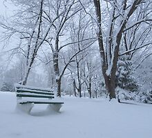 Winter bench by ahlasny