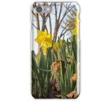 Spring has Arrived iPhone Case/Skin