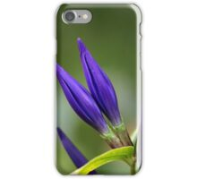 Willow gentian (Gentiana asclepiadea) iPhone Case/Skin