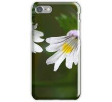 Flowers of the Eyebright Euphrasia rostkoviana, in the Bavarian Alps. iPhone Case/Skin